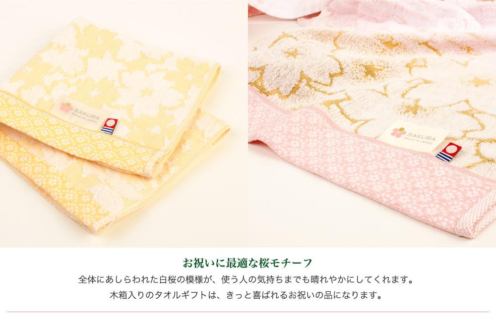 白桜説明3