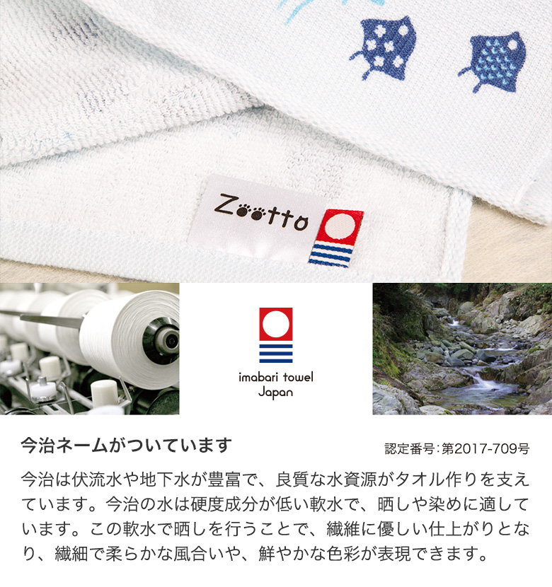 Zootto2