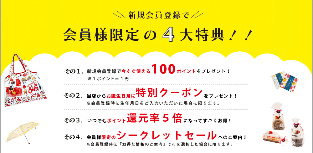 新規会員登録で100ポイントプレゼントキャンペーン